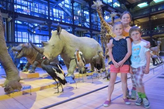 Le grand galerie d'évolution.